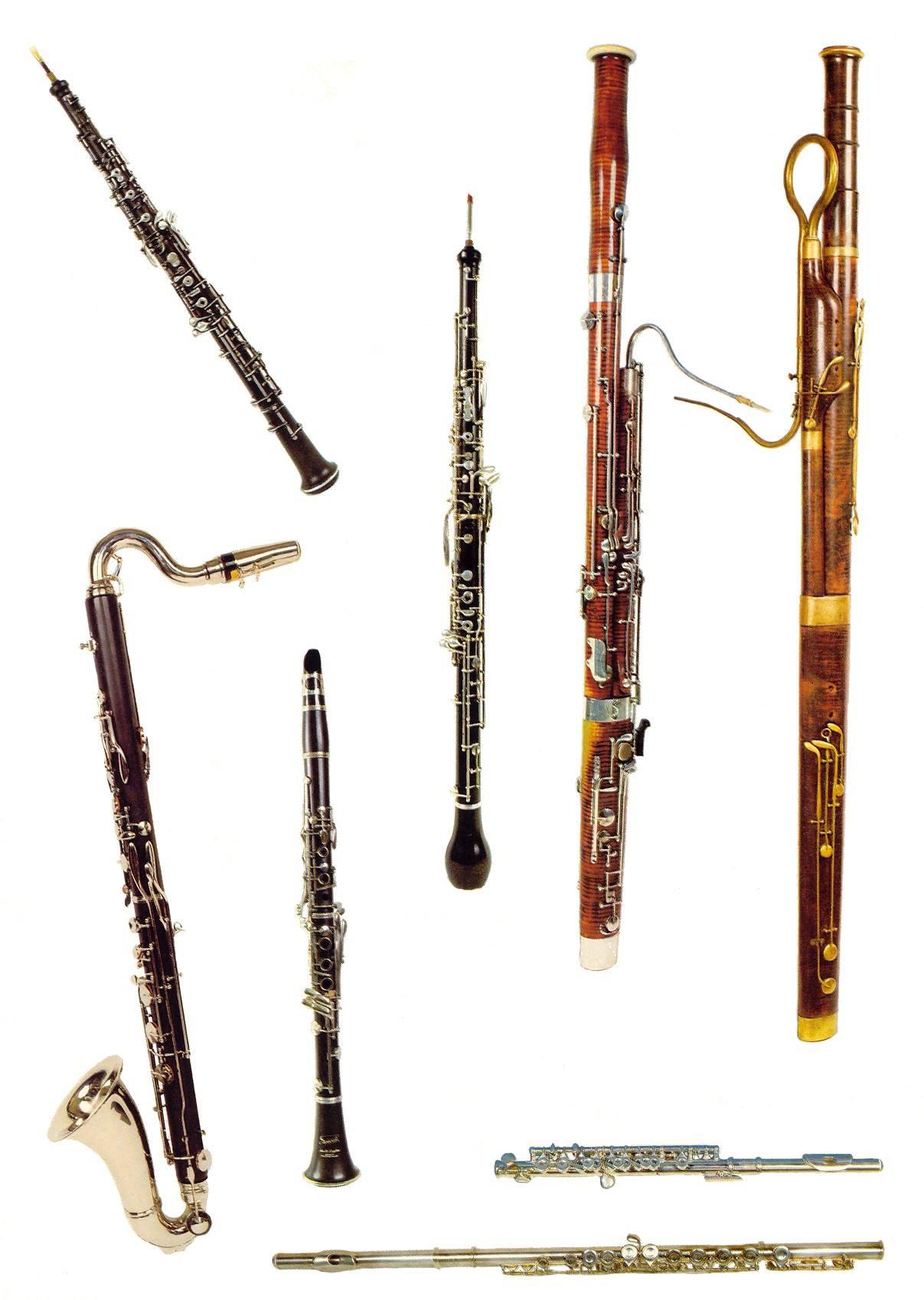 Photos de cuivres et bois instruments à Lille 59800 ~ Bois Instrument